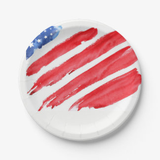 fourth of July colorful barbecue Paper Plate