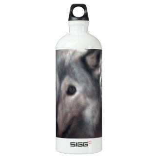 FOX at night dangerous animal cunning wild creatur SIGG Traveller 1.0L Water Bottle