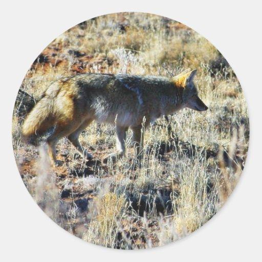 Fox Coyotes Wild Anilmal In Field Round Stickers