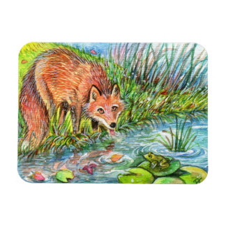 Fox Drinking By The Pond Magnet