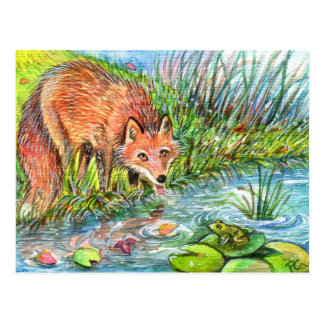 Fox Drinking By The Pond Postcard