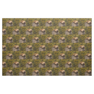 fox fabric, woodland fabric, quilting panels fabric