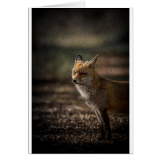Fox goodbye card