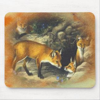Fox Hole Mousepad