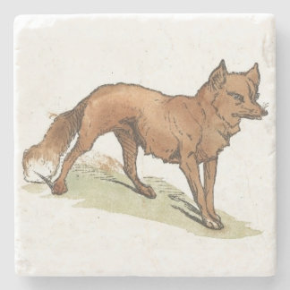 Fox Illustration Stone Beverage Coaster