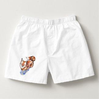 Fox in Socks Boxers