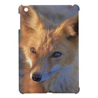 fox iPad mini case