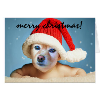 Fox Is A Baby In A Santa Hat #1 Card