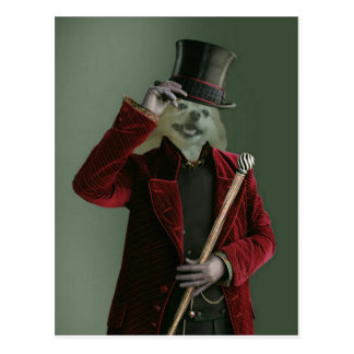 Fox Is The Invisible Man Postcard