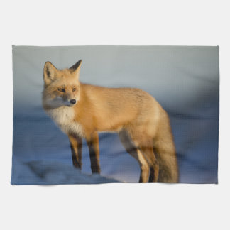 fox kitchen towel, foxy tea towel, fox cub home tea towel
