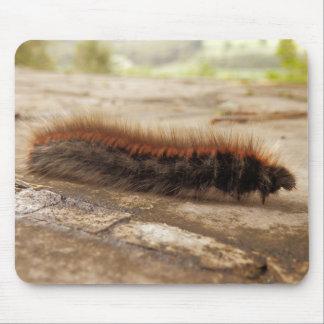 Fox Moth Caterpillar Mouse Mat