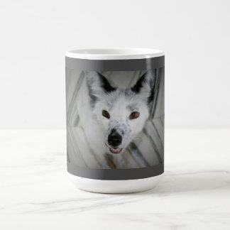 Fox Mug - Boris
