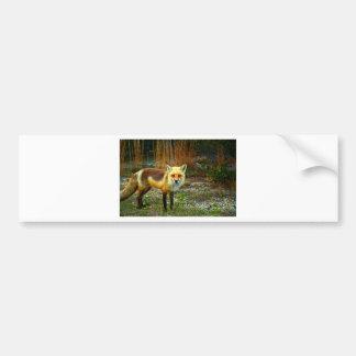 Fox on Grass Bumper Sticker
