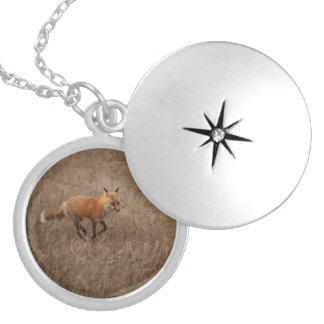 Fox on the Run Round Locket Necklace