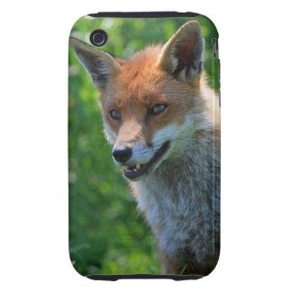 Fox red beautiful photo iphone 3G case mate tough iPhone 3 Tough Case