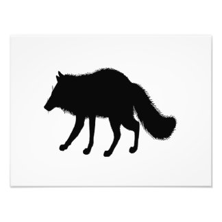 Fox Silhouette Photo Print
