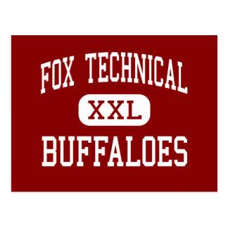 Fox Technical - Buffaloes - High - San Antonio Postcard