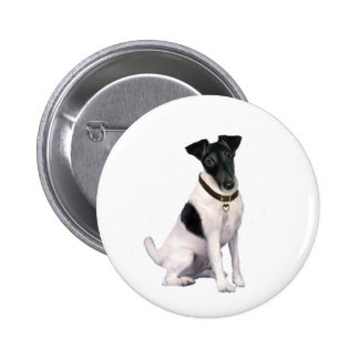 Fox Terrier A - Smooth - black-white Buttons