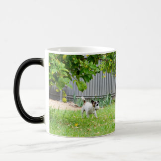 Fox Terrier, Funny Scare Face, Magic Morph  Mug