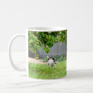 Fox Terrier, Funny Scare Face, White Coffee Mug
