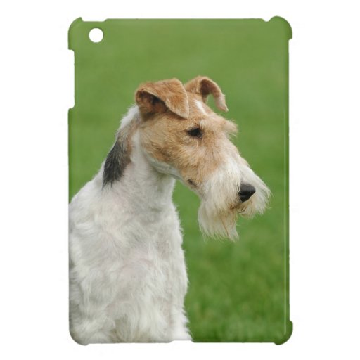 Fox Terrier iPad Mini Case