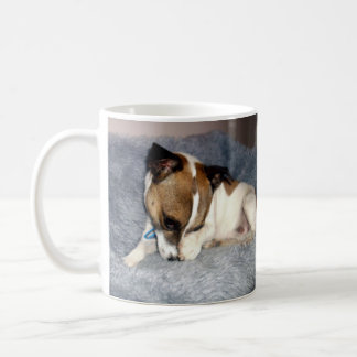 Fox Terrier, Oh So Shy, White Coffee Mug. Coffee Mug