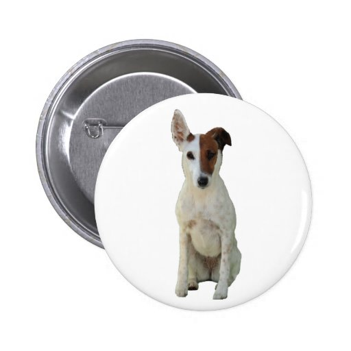 Fox Terrier Smooth dog beautiful photo button, pin