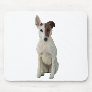 Fox Terrier Smooth dog beautiful photo mousepad