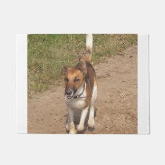 Fox_terrier_smooth_in_action Doormat
