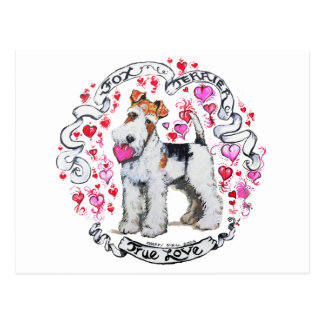 Fox Terrier Sweetheart Postcard