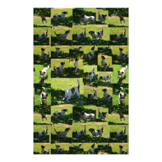 Fox Terrier, The Hard Day, Stationery