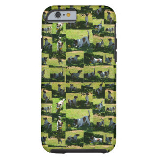 Fox Terrier, The Long Hard Day, iPhone 6/6S Case. Tough iPhone 6 Case