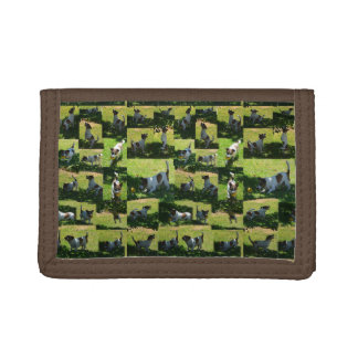 Fox Terrier The Long Hard Day Photo Collage, Trifold Wallet