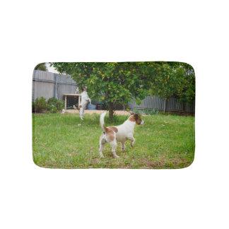 Fox Terriers Play Time, Bath Mat