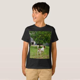 Fox Terriers Playtime, Boys Black T-shirt
