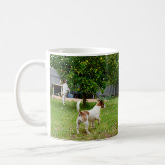 Fox Terriers Playtime, White Coffee Mug