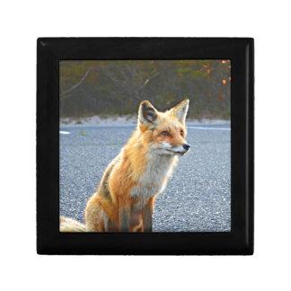 Fox Up Close Small Square Gift Box