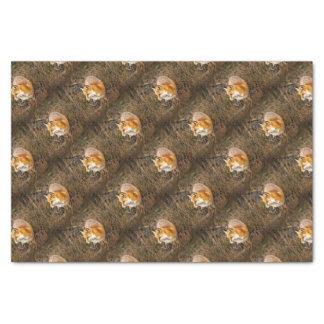 fox wrapping paper, woodland gift wrap tissue paper