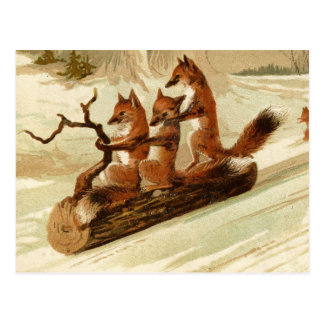 Foxes On Log In Snow Postcard