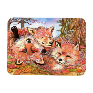 Foxes Play Time Magnet