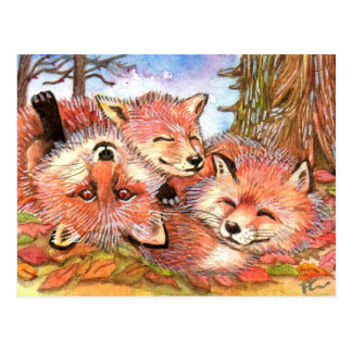 Foxes Play Time Postcard