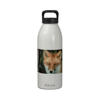 Foxes Reusable Water Bottle