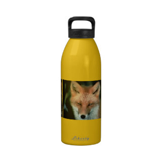 Foxes Drinking Bottle