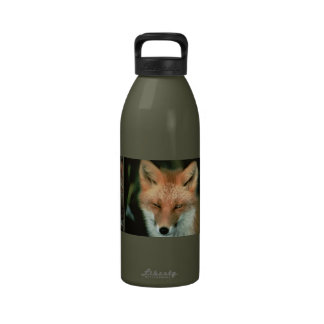 Foxes Drinking Bottles