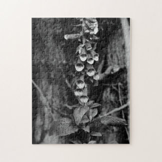 Foxgloves Jigsaw Puzzle