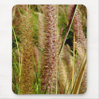 Foxtail grass macro photography picture mouse pad