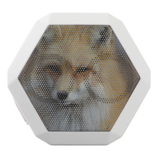 Foxy Fox White Boombot Rex Bluetooth Speaker