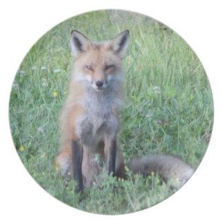 Foxy Lady Dinner Plate