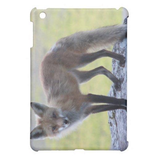 Foxy Momma iPad Mini Covers