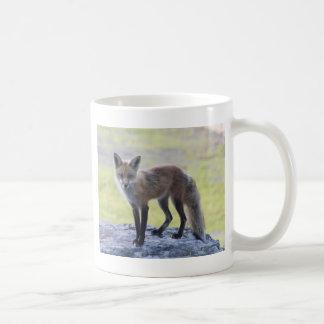 Foxy Momma Coffee Mugs